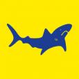 City of Leeds Swimming Club